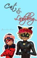 cat and ladybug ☆ ML by feneko-chan