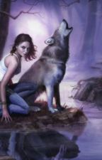 Human among wolves by Arti3200