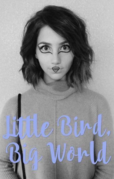 Little Bird, Big World || Lucas Friar