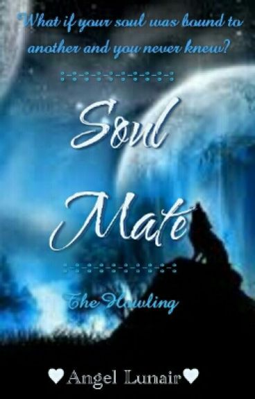 Soul Mate (On Hold)