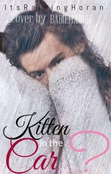 Kitten In The Car? L.S