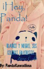 ¡Hey, Panda! by PandaKawaiilosa