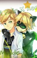 Chat Noir X Reader  by maddie_cutie1