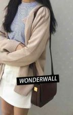 wonderwall • seulmin by -ddeokboki