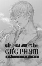 Gặp Phải Anh Chàng Cực Phẩm - Ta Là Tô Tố by xthienvanx
