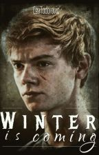 Winter is coming Thomas Sangster FF by LeaTodorovic
