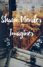 Shawn Mendes Imagines by ballerina_x
