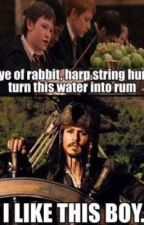 A Harry Potter and Pirates of the Caribbean Crossover by HattersGirlAlice
