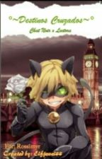 °~Destinos Cruzados Chat Noir & Tu~° by Rossimyr
