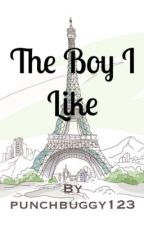 The Boy I Like by punchbuggy123