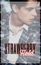 strawberry field ✗ riarkle by riarklestown