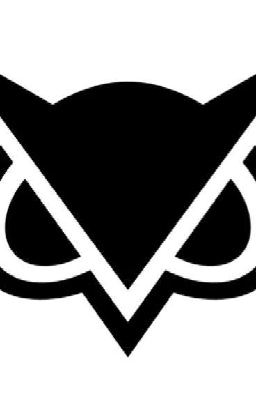 Vanoss (evan) x Reader (WARNING SMUT OR LEMON)