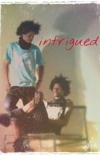 Intrigued (les Twins fanfic) by LTWICKED