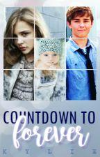 Countdown to Forever | ✓ by o-b-l-i-v-i-o-n