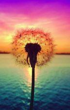 Рэй Брэдбери - Вино из одуванчиков  by little_miss_miracle