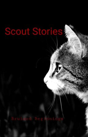 Scout Stories: Bruised Beginnings by TheKaleyCarter