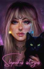 Slapukes istorijos (prologai/įžangos) by Slapuke