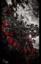 In Love With Luke Hemmings by CalumsACutie