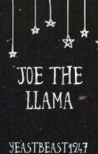 Joe the Llama by joshlersvessel