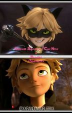 Adrien/ Cat Noir  x Reader Oneshots by xXRandomGurl69Xx