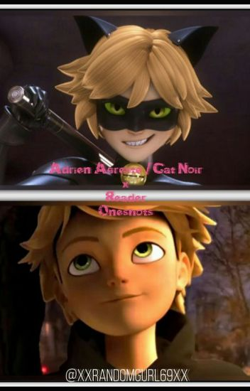 Adrien/ Cat Noir  x Reader Oneshots