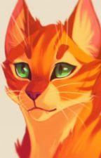 Firestar x Reader [Warrior Cats] by EscalateDestinate