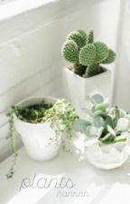 plants by Danisamemeonfire