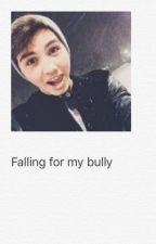 Falling for my bully (Sam Pottorff Fanfic) by allsmileskiana