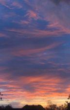 Secret Boss by valeria_kamozina