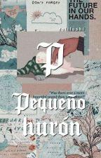 Mi Lindo Hurón by DaliFujoshi