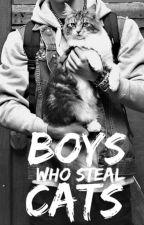 Boys Who Steal Cats by tatortotmajesty
