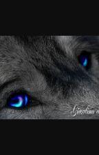 Gli occhi del Lupo by GiorgiaF12