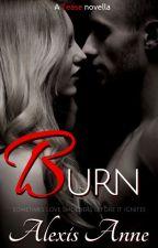 Burn (a Tease novella) by AlexisAnneBooks