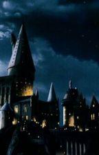Harry potter preferences by XxFamAtHeartxX