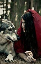 Волк/Судьба by Min_Yoon_Gi-Suga