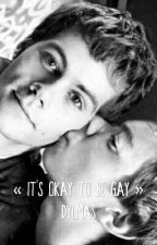 « IT'S OKAY TO BE GAY » DYLMAS FF by hookswife