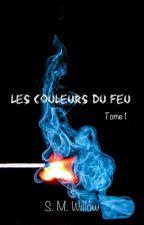 Les couleurs du feu - Tome 1 : mourir au bûcher by SalomWillow