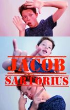 Jacob Sartorius by paprixa