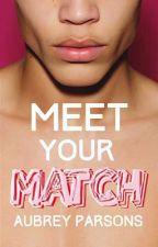 Meet Your Match by AubreyParsons