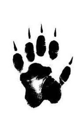 Top Werewolf Books The Code Of The Alpha Wattpad