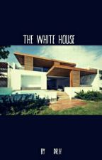 The White House by Sterionlee