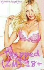 Trapped (Zayn Malik) 18+ by 94lovelystyles