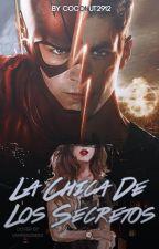 La Chica De Los Secretos (Barry Allen Y Tu) by Coconut2912