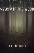 The Mystery In The Woods by savannahleebevan