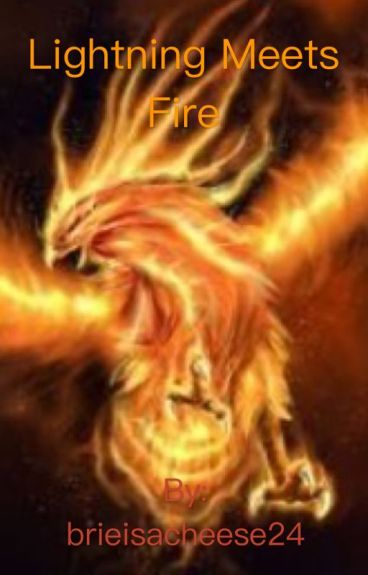 Lightning And Fire(The Flash x reader