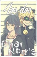Miraculous Ladybug: Los dos Chat Noir's. by Merissant