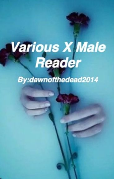 Various X Male Reader