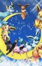 Pokemon Quest for the human pokemon. by cursegirl