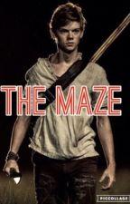 The Maze by dobismypickle