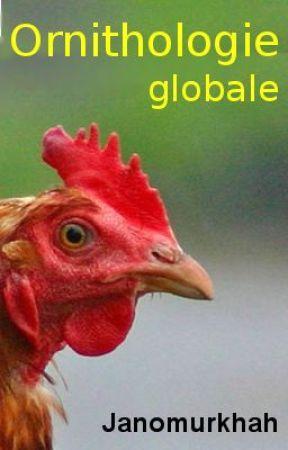 Traité d'ornithologie globale by wergosum